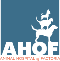 Animal Hospital of Factoria