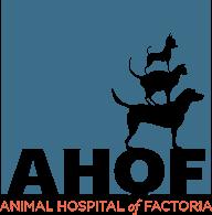 Animal Hospital of Factoria